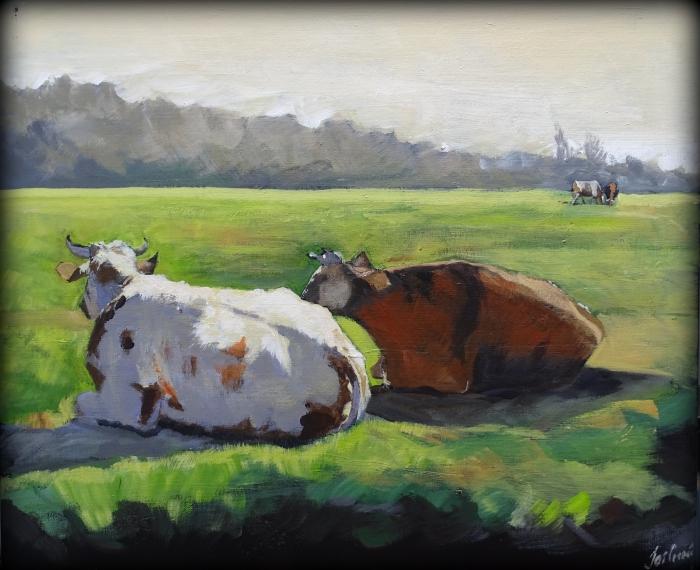 koeien liggend in weiland