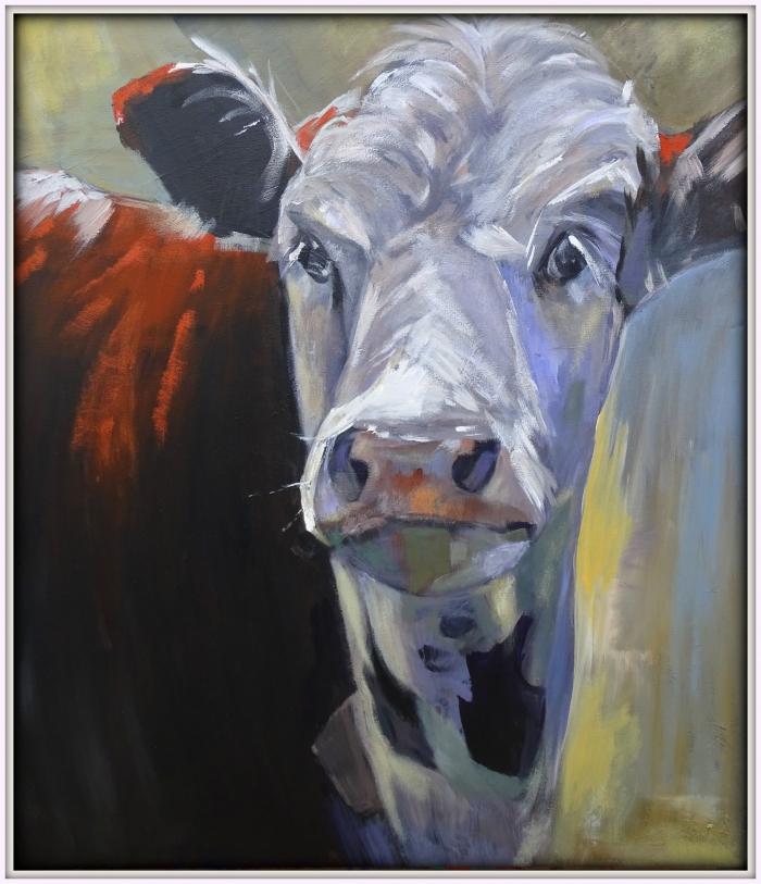 portret koe